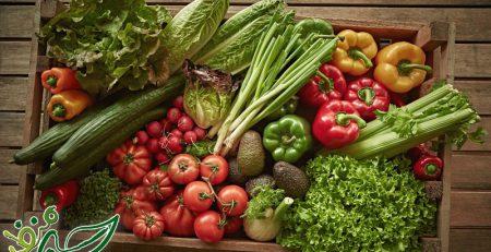 تفاوت-محصول-سالم-و-ارگانیک-در-چیست؟