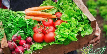 لیست-غذاهای-ارگانیک