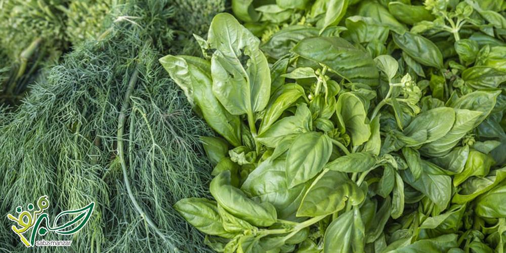 طبع سبزی خوردن